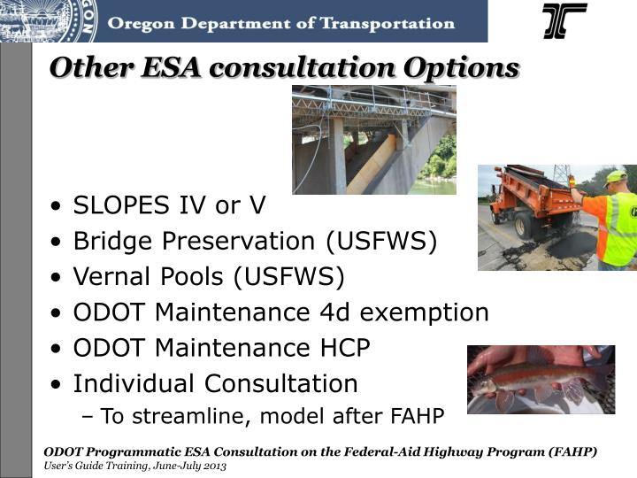 Other ESA consultation Options
