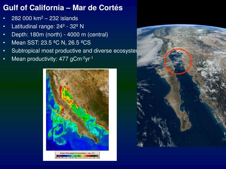 Gulf of California – Mar de Cortés