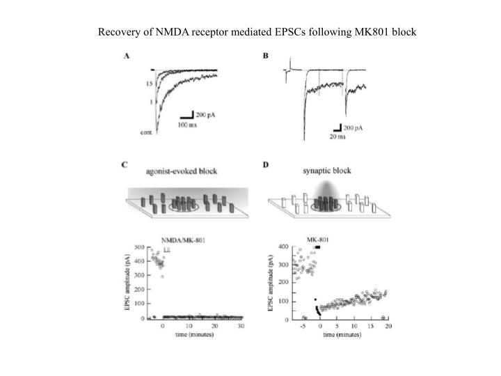 Recovery of NMDA receptor mediated EPSCs following MK801 block