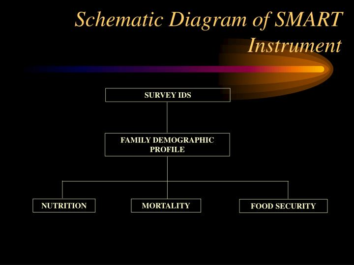 Schematic Diagram of SMART Instrument