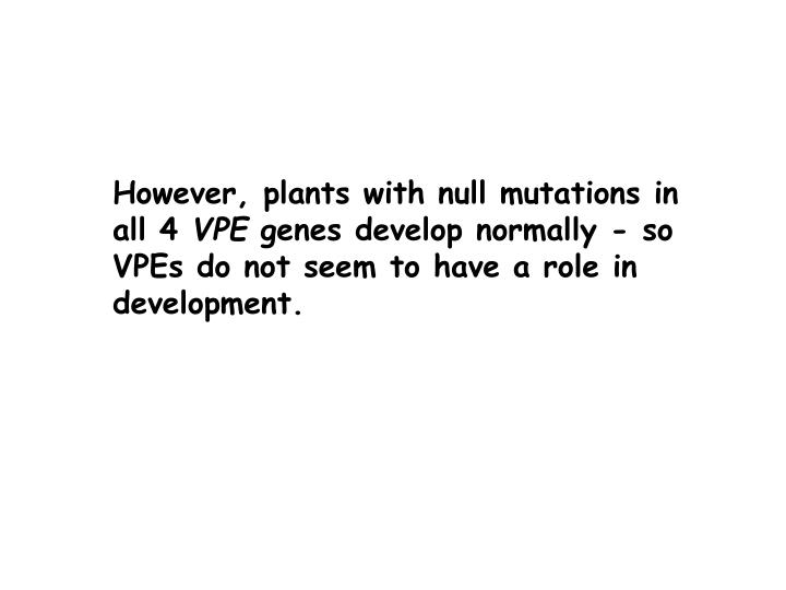 However, plants with null mutations in all 4