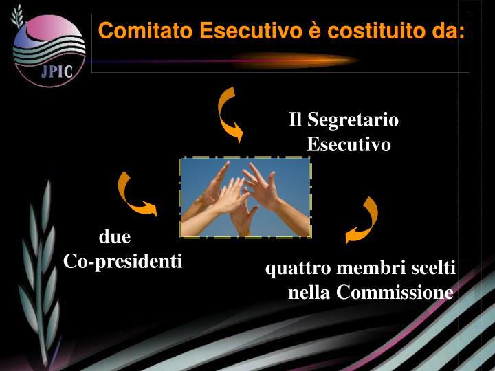 Comitato Esecutivo è costituito da: