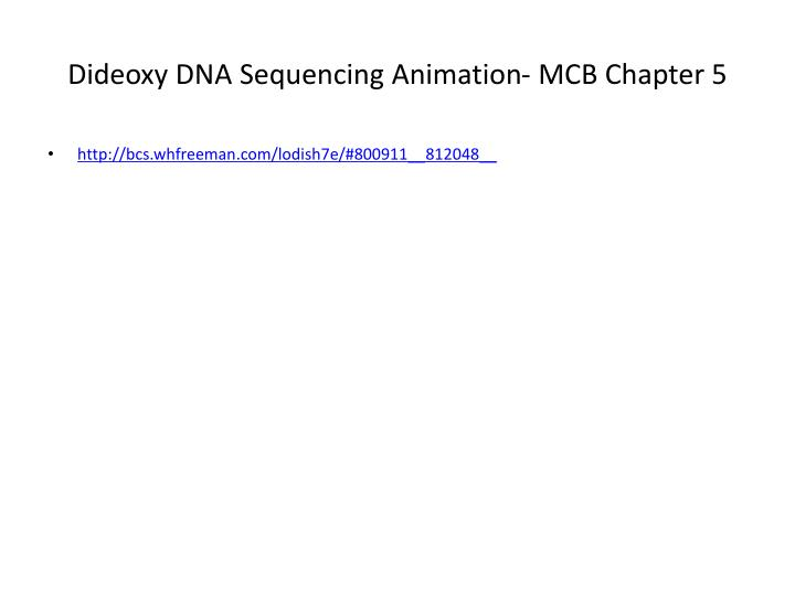 Dideoxy DNA Sequencing Animation- MCB Chapter 5