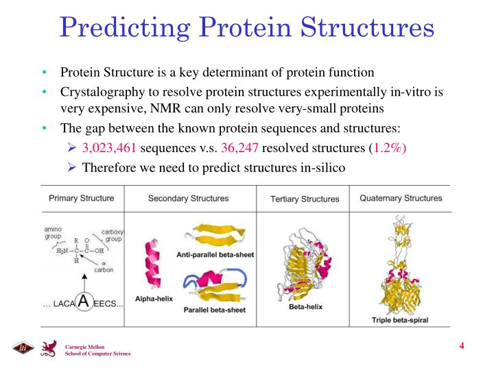 Predicting Protein Structures