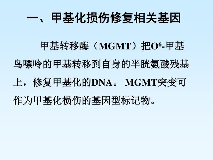 一、甲基化损伤修复相关基因