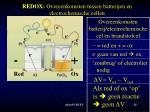 redox overeenkomsten tussen batterijen en electrochemische cellen