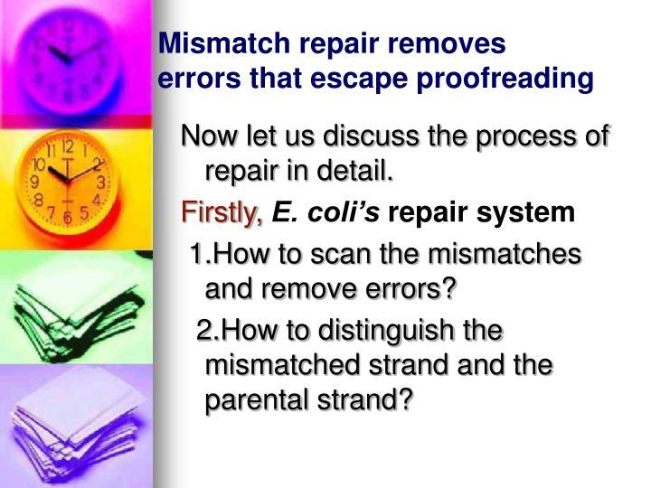 Mismatch repair removes