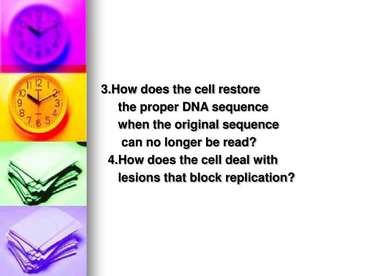 3.How does the cell restore
