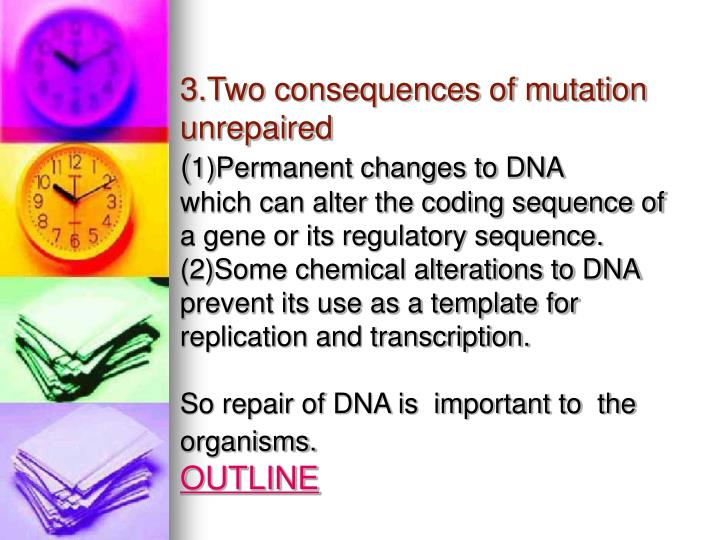3.Two consequences of mutation unrepaired