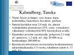 kalundborg tanska1