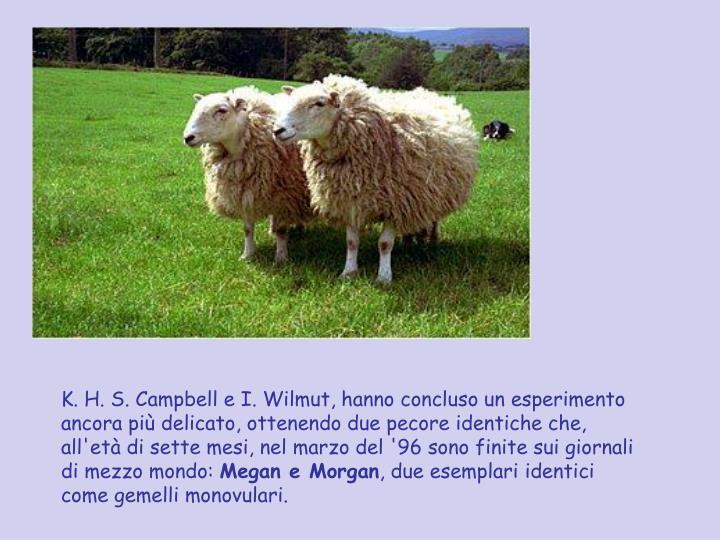 K. H. S. Campbell e I. Wilmut, hanno concluso un esperimento ancora più delicato, ottenendo due pecore identiche che, all'età di sette mesi, nel marzo del '96 sono finite sui giornali di mezzo mondo: