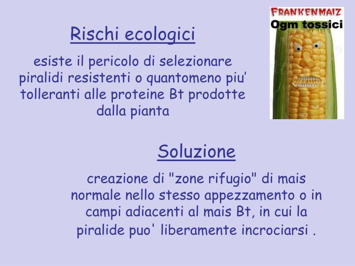 Rischi ecologici