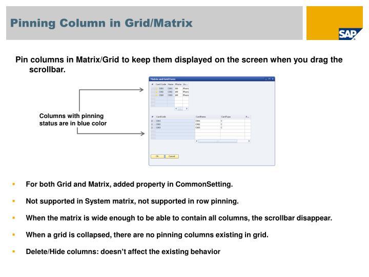 Pinning Column in Grid/Matrix