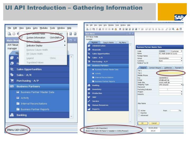 UI API Introduction – Gathering Information