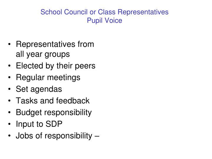 School Council or Class Representatives