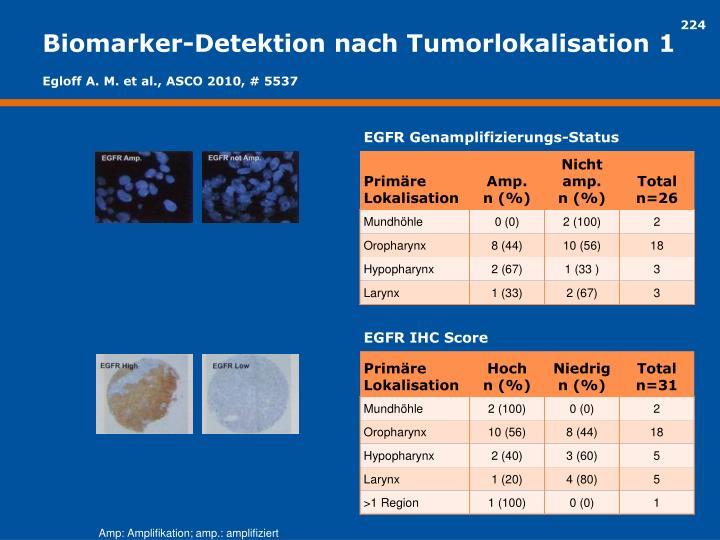 Biomarker-Detektion nach Tumorlokalisation 1