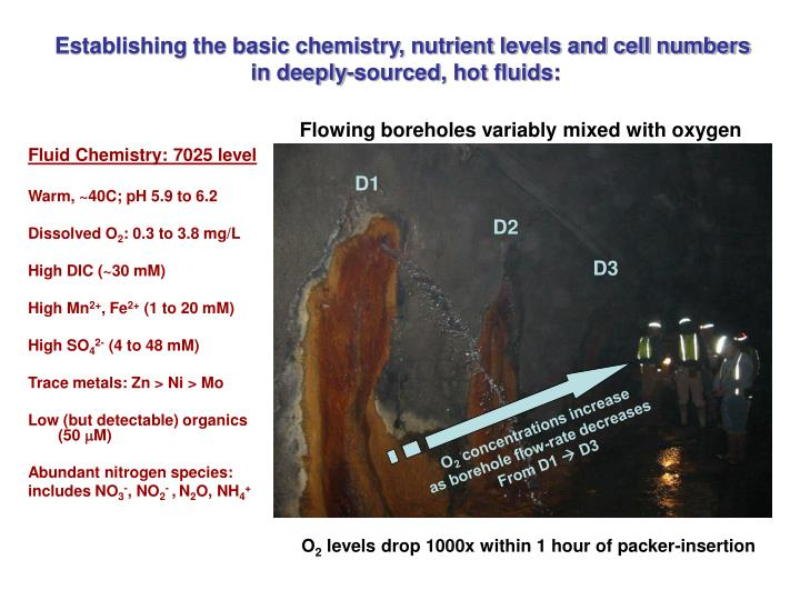 Establishing the basic chemistry, nutrient levels and cell numbers