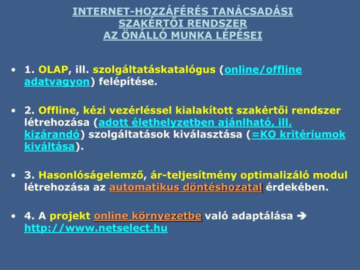 INTERNET-HOZZÁFÉRÉS TANÁCSADÁSI