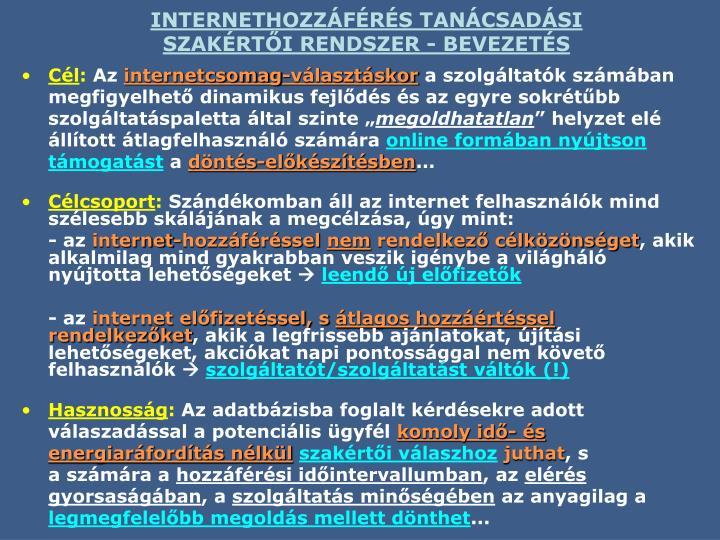 INTERNETHOZZÁFÉRÉS TANÁCSADÁSI