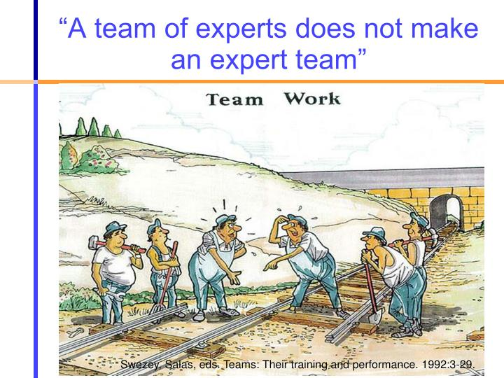 """A team of experts does not make an expert team"""