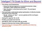 intelligent fill goals for 65nm and beyond