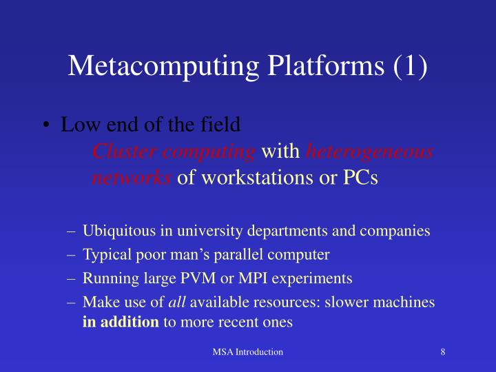 Metacomputing Platforms (1)