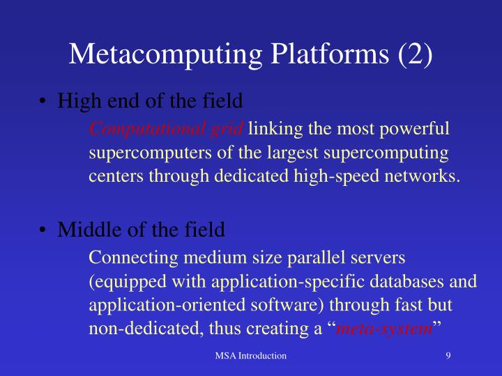 Metacomputing Platforms (2)
