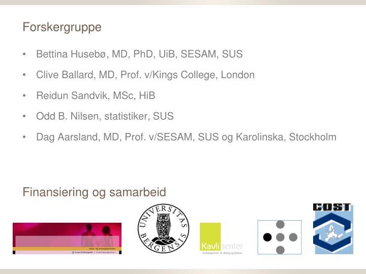 Forskergruppe