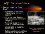 wqs narrative criteria