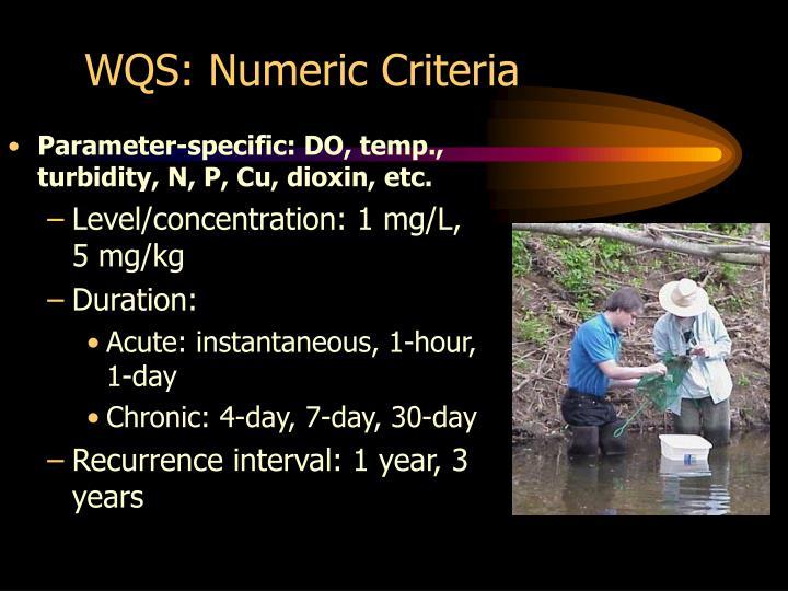 WQS: Numeric Criteria