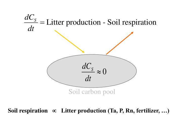 Soil carbon pool