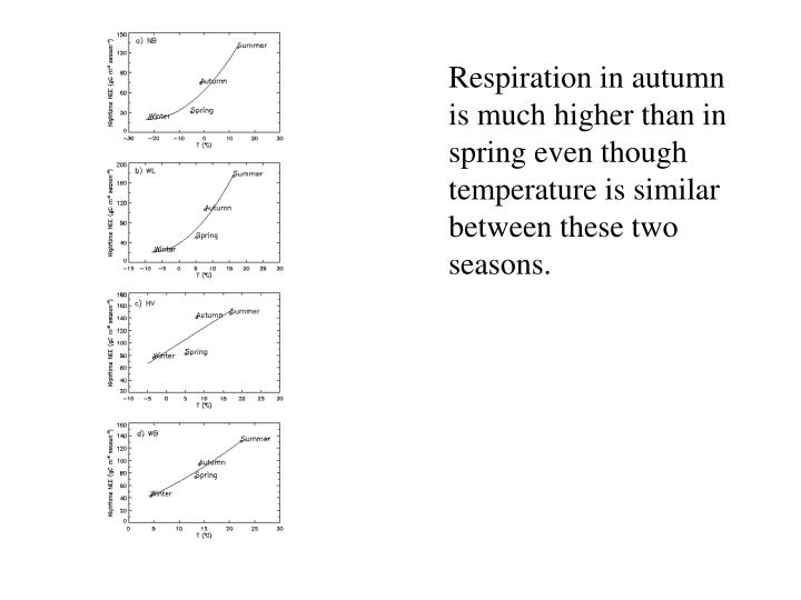 Respiration in autumn is much higher than in spring even though temperature is similar between these two seasons.