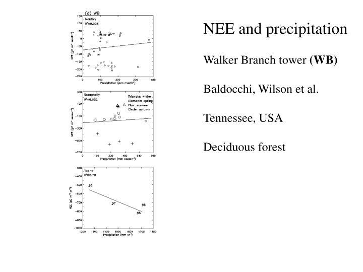 NEE and precipitation