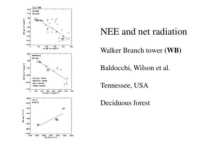 NEE and net radiation