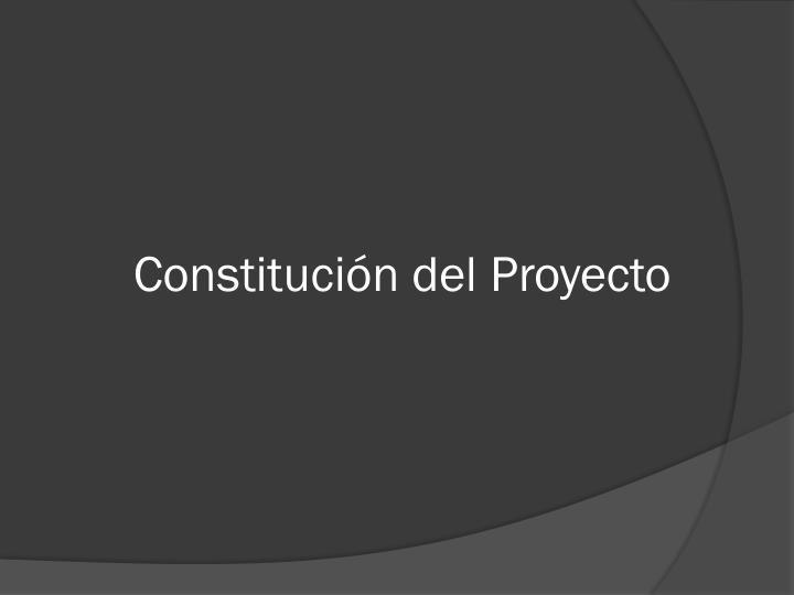 Constitución del Proyecto