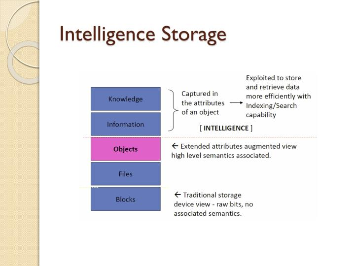 Intelligence storage