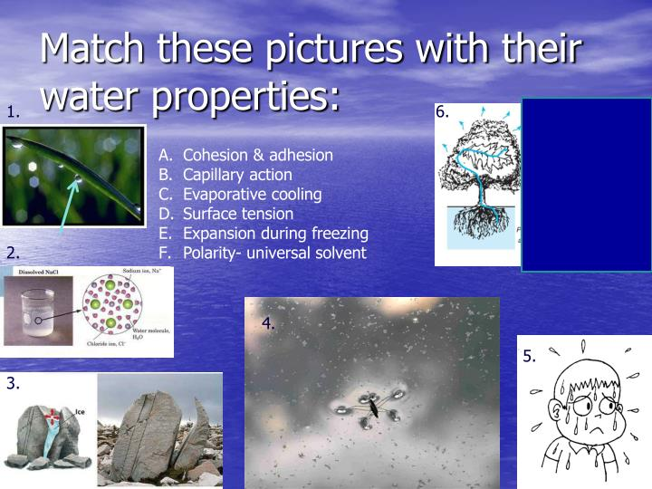 Match these pictures with their water properties: