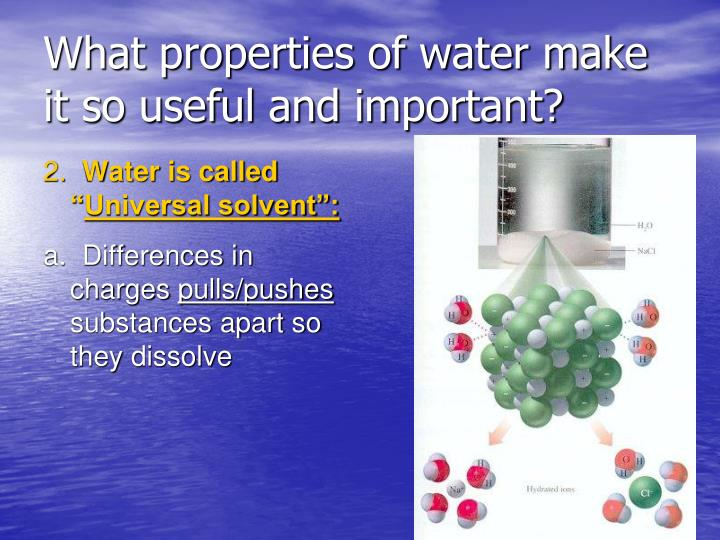 What properties of water make it so useful and important?