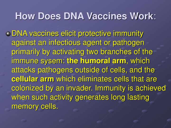 How Does DNA Vaccines Work