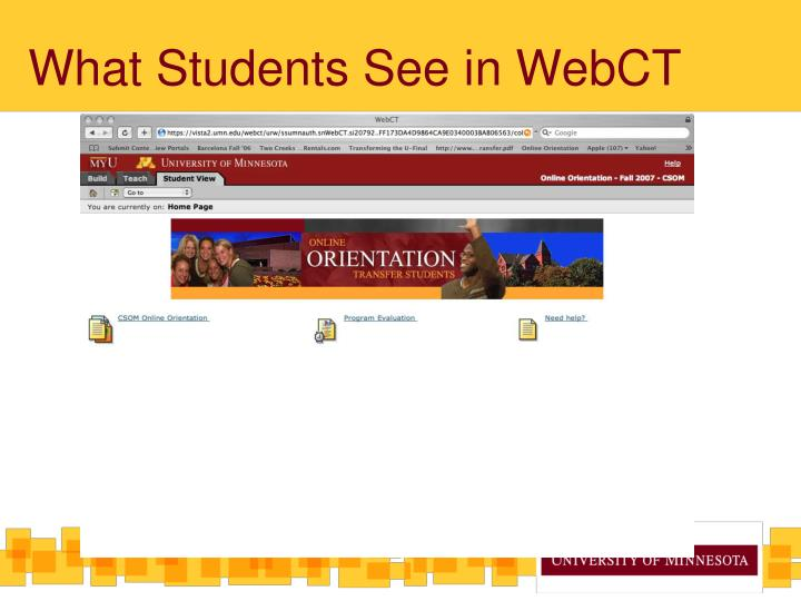What Students See in WebCT