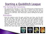 starting a quidditch league