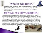 what is quidditch