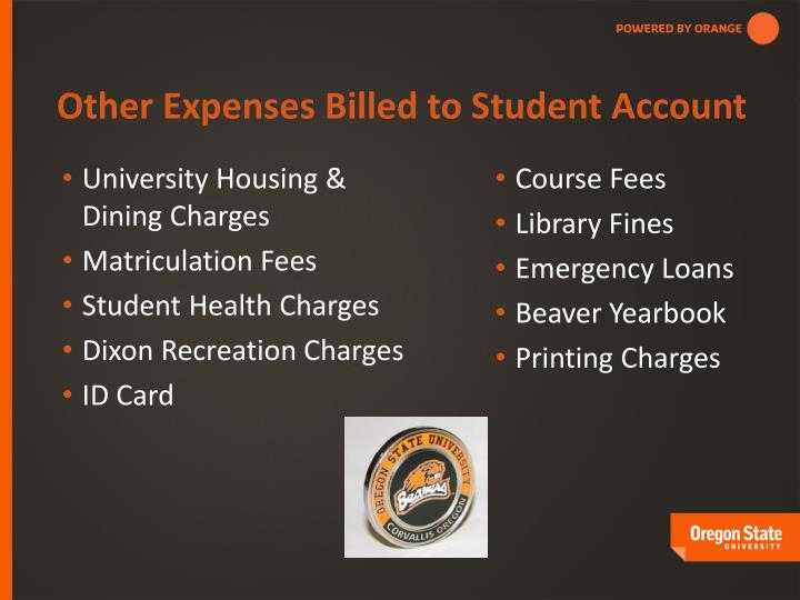 Other Expenses Billed to Student Account