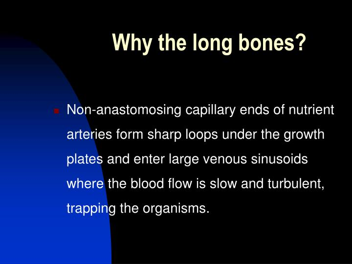 Why the long bones?