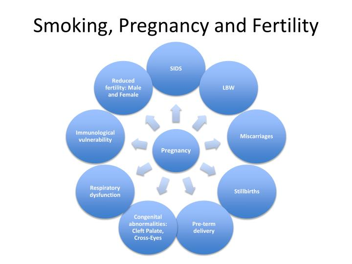 Smoking, Pregnancy and Fertility