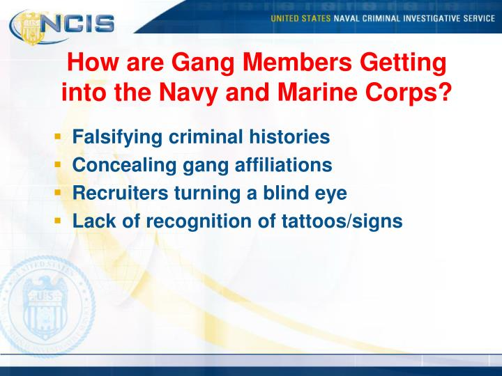 How are Gang Members Getting into the Navy and Marine Corps?