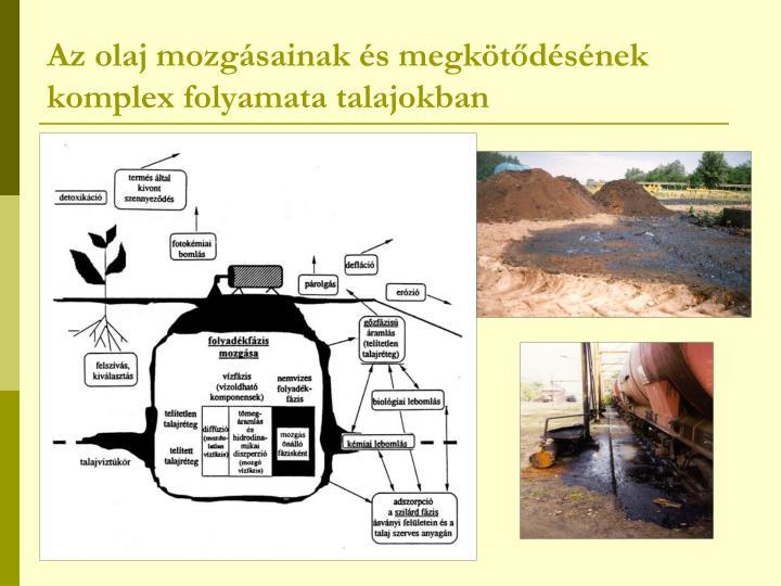 Az olaj mozgásainak és megkötődésének komplex folyamata talajokban