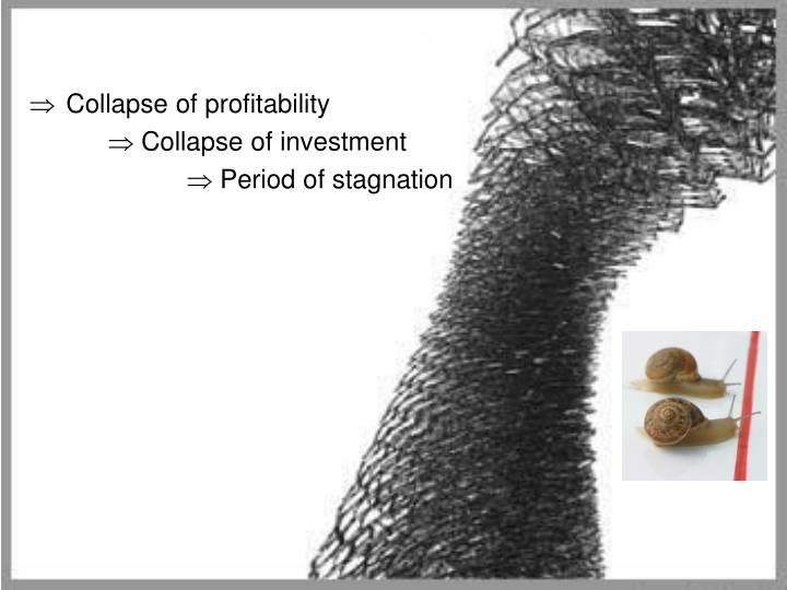 Collapse of profitability