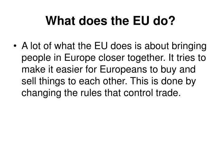 What does the EU do?