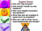 support scene